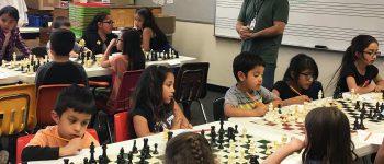 Transformar os jogos lúdicos em ferramentas educativas e de treino